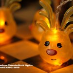 Reindeer Glow-in-Dark Lights (DBS09/CHR18GID All rights reserved)